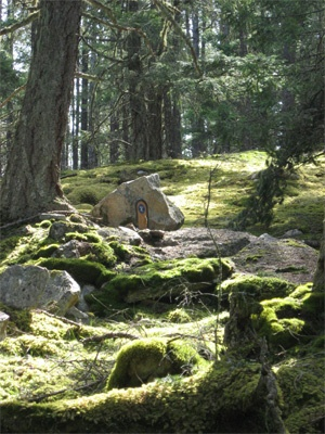 Take A Walk On The Whimsical Side - The Enchanted Trails of Salt Spring Island's Mt. Erskine