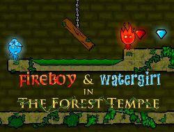 Онлайн игра Огонь и Вода 1: В Лесном Храме. Играть бесплатно в Fireboy and Watergirl 1: in The Forest Temple
