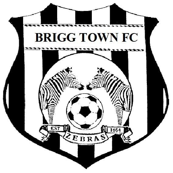 "brigg town fc ""the zebras"""