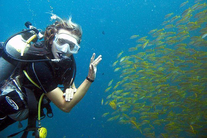 Sukeltaminen Pattayalla  Pattaya on Thaimaan suurin salaisuus sukeltajien keskuudessa. Vain parin tunnin ajomatkan päässä Bangkokista löytyy yllättävän hyvät sukellusmaastot.