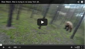 Il échappe à une attaque dours en vélo [video]   echappa a une attaque d ours en velo