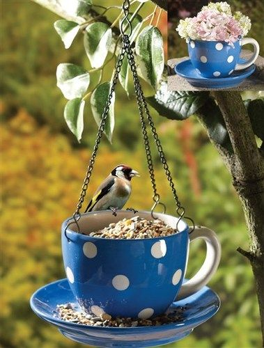 Teacup and saucer bird feeder - grab a dollar store cup and saucer and make this cute feeder!
