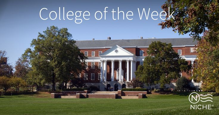 @umdedu  #UniversityofMaryland is a Niche College of the Week. To find more information on University of Maryland including rankings and reviews check out https://colleges.niche.com/university-of-maryland----college-park/