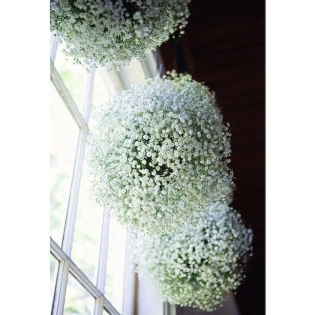 """Instead of pompoms or paper lanterns, why not use balls of #babysbreath for your wedding? #weddings #weddingideas #weddinginspiration #RosaClaraPH"""
