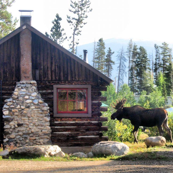 Merveilleux Colorado Cabin Adventures   Grand Lake, CO