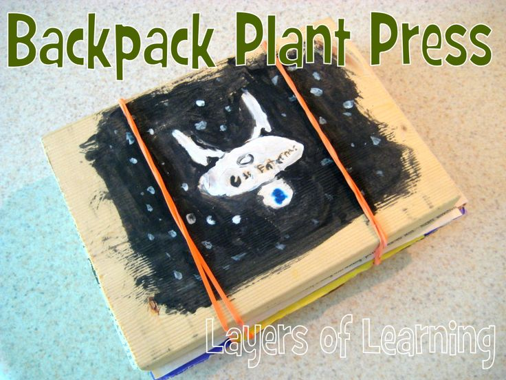 backpack plant press. collecting and drying plants and leaves for projects