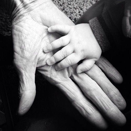 BeautifulHands Young, Generation Ideas, Fotografíaphotographyart, Touch Photos, Grandparents Photos, Grandchild Hands, Grandparents Pics, Families Portraits, Fotografía Photography Art