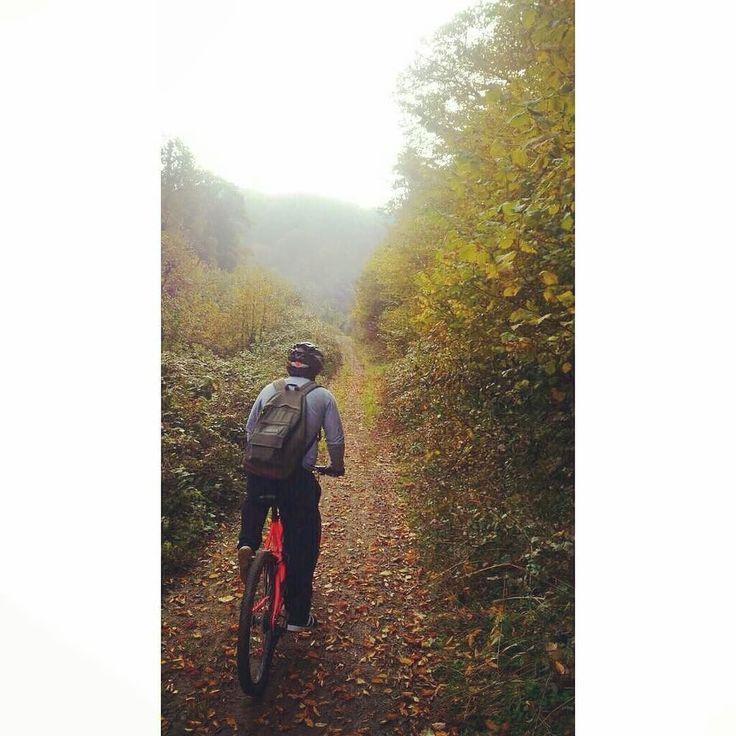 Doğayla içiçe @zay teşekkürler #doğa #kış #bisiklet #bisikletturu #bubisiklet #mersinbisiklet #bisikletaşkı #bisikletkeyfi