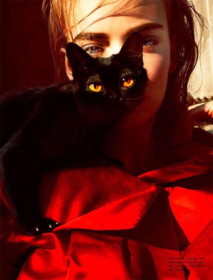 пользователей фото человека с черной кошкой место, где