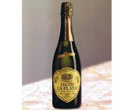 Cava-Vino || Cava Via de la Plata Brut Chardonnay    Un cava para verdaderos entendidos, ya que el vino base está elaborado exclusivamente con uva Chardonnay, considerada la mejor variedad para la elaboración del cava. Al cava producido con esta uva se le llama Blanc de Blancs, siendo el más apreciado.  Caja de 6 unidades.