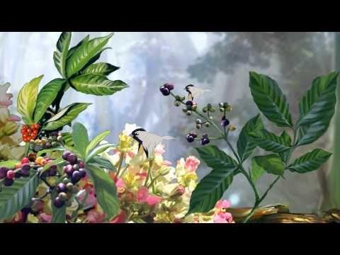 TEASER_AWARA NANE PUTANE - YouTube