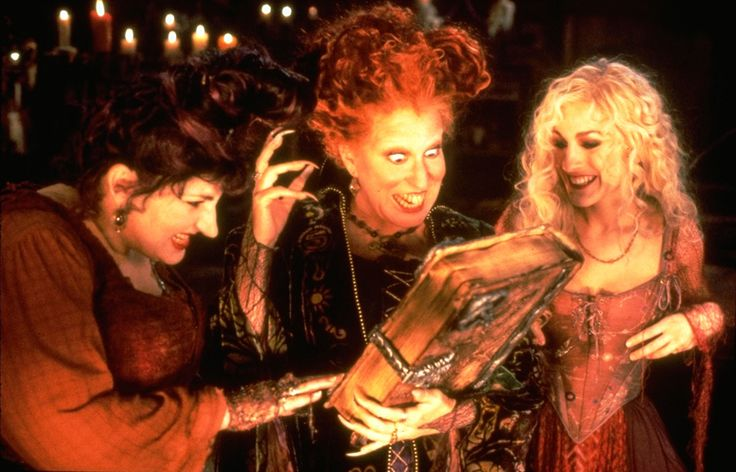 What is it about Hocus Pocus that has cemented it in the annals of pop culture for all of these years? Is it the wardrobe (excellent)? Soundtrack (hoppin')? Script (clever)? Nay, friends.