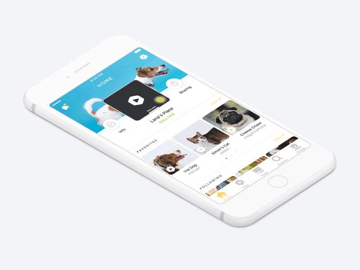 Petcube iOS — Home  by Jake Davies