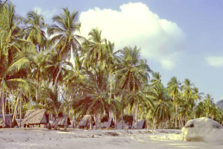 1988: Beach bungalows in Lamai. History of Koh Samui here: https://islandinfokohsamui.com/2016/03/12/samui-history/