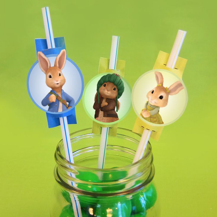 Peter Rabbit Party Straw Toppers