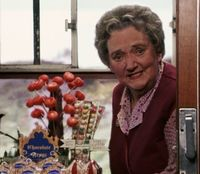 The Honeydukes Express was the food trolley aboard the Hogwarts Express that…