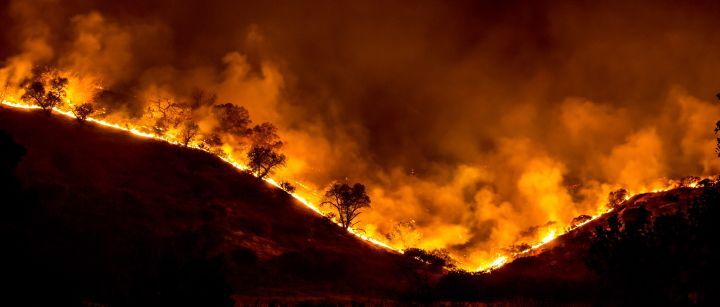 Trump Again Misunderstands California S Wildfires By Jessica Mcdonald Posted On November 8 2019 Factcheck California Wildfires Climate Change Types Of Forests