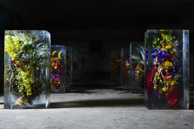 ICED FLOWERS 2