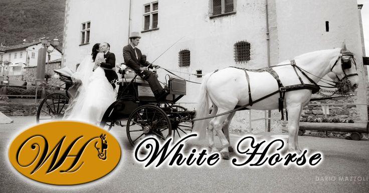 In un matrimonio da favola non può mancare una splendida carrozza trainata da magnifici cavalli bianchi: WHITE HORSE realizza il vostro sogno nel giorno più bello della vostra vita.