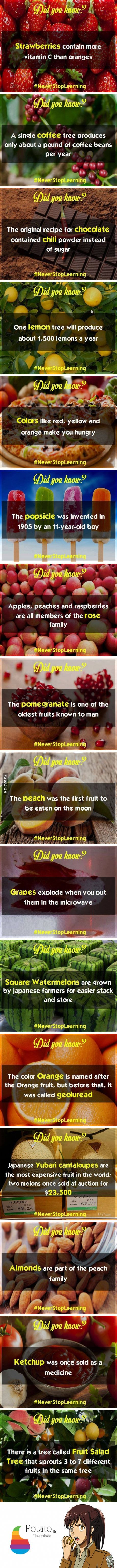 15 Did You Know? Food/Fruit Facts