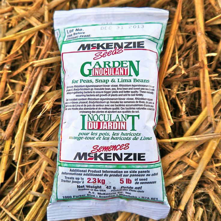 """Inoculant is a fine,""""magic powder"""" called inoculant contains beneficial micro-organisms that attach to plant roots and help make atmospheric nitrogen become available to legumes, which in turn, fix the nitrogen back into the soil. Use for beans and peas - you'll notice the difference!"""