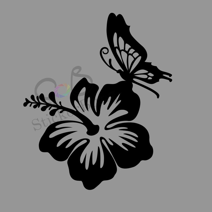 Best Car Decals Images On Pinterest Butterfly Car Decals And - Butterfly vinyl decals