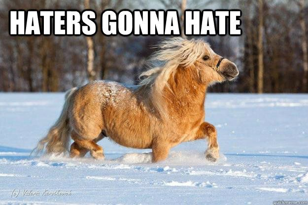 Oh little pony, you are so cute! No one is gonna hate you!