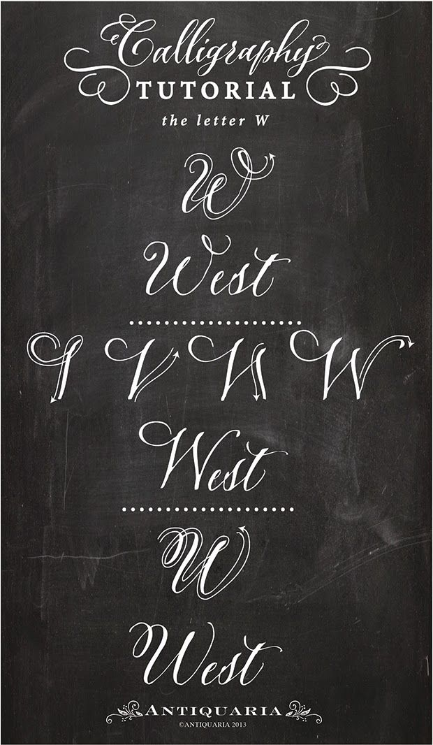 """Calligraphy Tutorial   the Capital Letter """"W"""" / by Antiquaria Design Studio / typography / hand lettering / DIY instructions"""