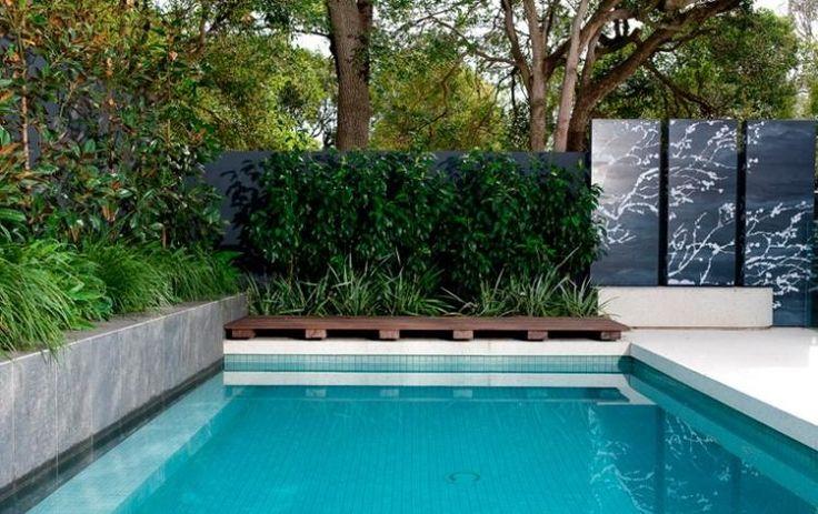 Pool im Garten - Stauden und Metallzaun bieten Sichtschutz - moderne gartengestaltung mit pool