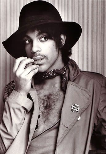 "Prince (born Prince Rogers Nelson), singer, songwriter, musician, and actor. He has produced 10 platinum albums and 30 Top 40 singles during his career.  In additon to his voice, his instruments include: guitar, bass guitar, piano, keyboards, synthesizer, clavinet, drums, percussion, saxophone, harmonica, and Linn drum. He pioneered the ""Minneapolis sound"", a hybrid mixture of funk, rock, pop, R+B and New Wave that has influenced many other musicians."