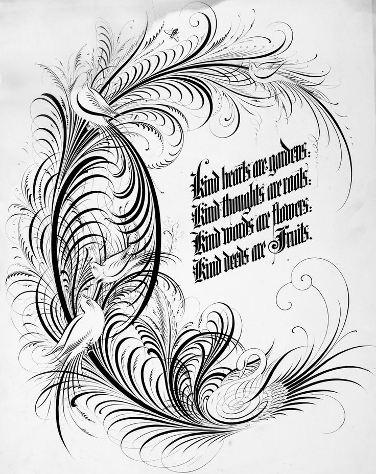 128 Best Ornamental Calligraphy Penmanship Flourish Images