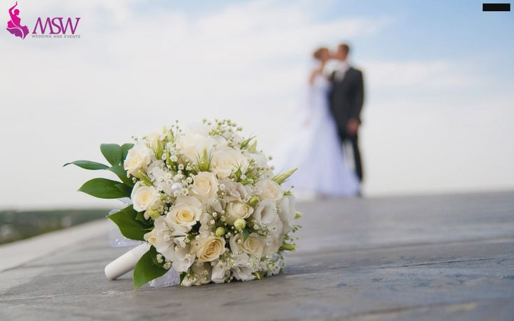Want to give a surprise to your better half by taking in your own world. Tell to MSW team we make your dream come true, assuring  it wil be a golden memorable one. thus we are remaining as the best honeymoon planners in bahrain. We provide honeymoon packages at affordable cost in Manama & Muharraq Bahrain.  http://msw.ae/honeymoon-planners-in-bahrain/