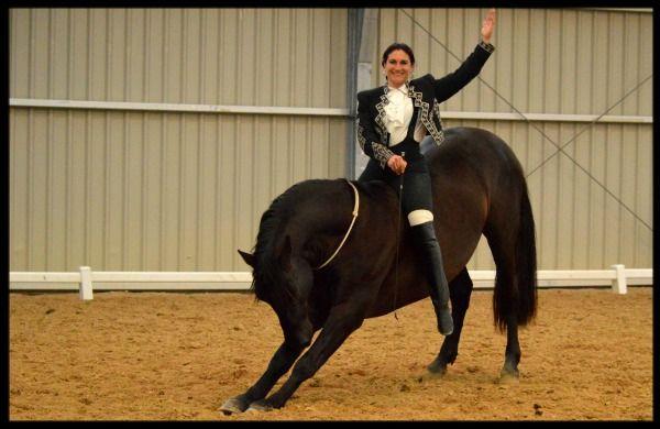 Les particularités des chevaux de pure race espagnole