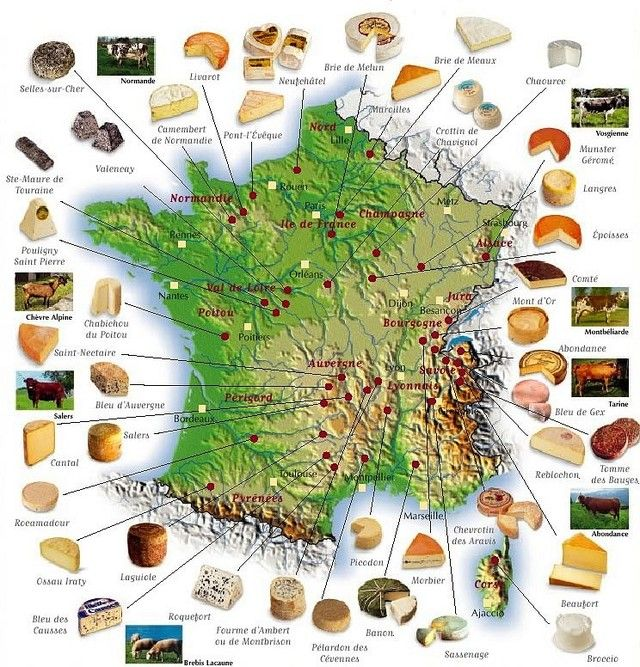 The many cheeses of France, mapped out. Carte-de-France-des-fromages-brie-de-Melun-camenbert-de-Normandie-bleu-d-Auvergne-Roblochon-Mont-d-or-Comté-Munster-Roquefort-Chabichou-Fourme-d-Ambert-Morbier-Maroille
