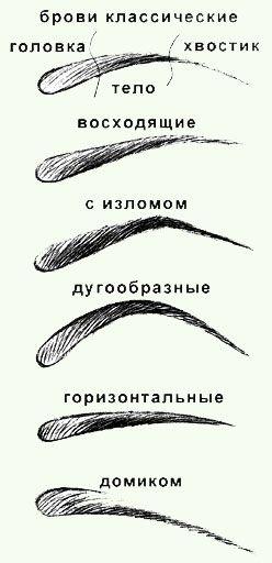 абсолютно женское чтиво - современные брови