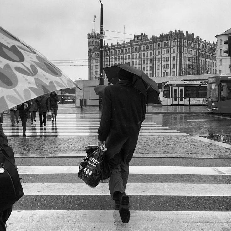 """318 kedvelés, 3 hozzászólás – AndrewBarasits (@andrewbarasits) Instagram-hozzászólása: """"#rain #umbrella #all #black #morning #hurryup #work #agent #tulips #street #bnwmood…"""""""