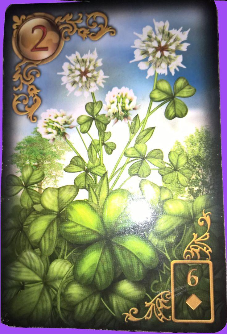 Der Klee  Kurzbedeutungen:  + Das Glück, glückliche Wende, Neubeginn, Expansion, Lauf des Schicksals, Bestimmung, das Auf und Ab des Lebens, den Moment ergreifen, das Jetzt und Hier, die Gunst der Stunde, die Ruhe findest Du in deiner Mitte, die Zeit ist dein Lehrmeister, das Schicksal, dein Schicksal selbst in die Hand nehmen,     - Situationen, auf die Du keinen Einfluss hast, unvorhergesehene Umschwünge, die höhere Macht durchkreuzt deine Pläne, es ist noch nicht die Zeit deine Vorhaben…