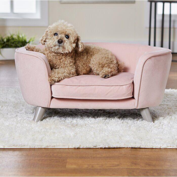 Heisler Dog Sofa Dog Beds For Small Dogs Girl Dog Beds Dog Sofa