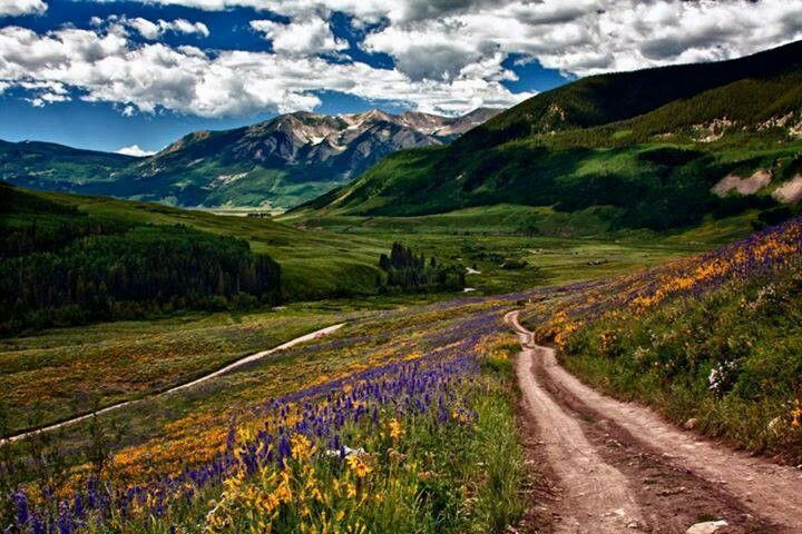 Near Crested Butte Co.