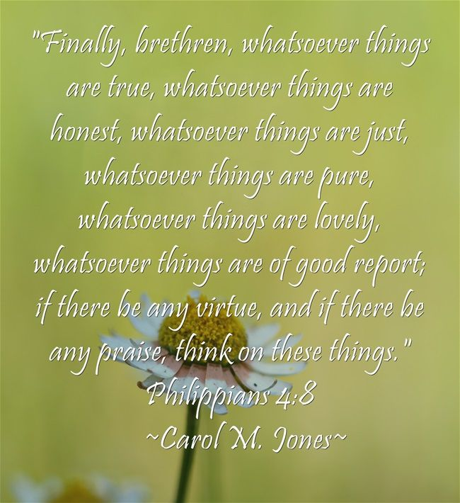 Finally, brethren, whatsoever things are true, whatsoever things are honest, whatsoever things are just, whatsoever things are pure, whatsoever things are lovely, whatsoever things are of good report; if there be any virtue, and if there be any praise, think on these things. Philippians 4:8   ~Carol M. Jones~