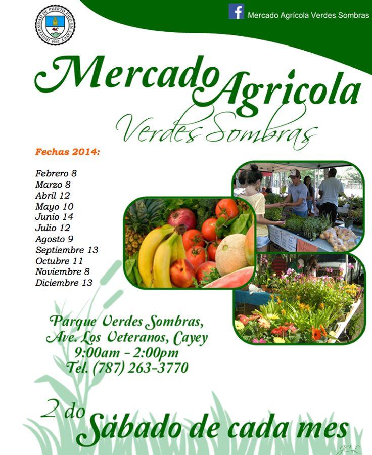 Mercado Agrícola Verdes Sombras 2014 @ Cayey #sondeaquipr #mercadoagricola #verdessombras #cayey #upr