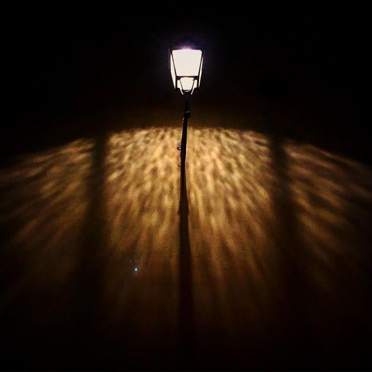 Dancing in the moonlight (leopard lights) #firenzebyalexcommentator