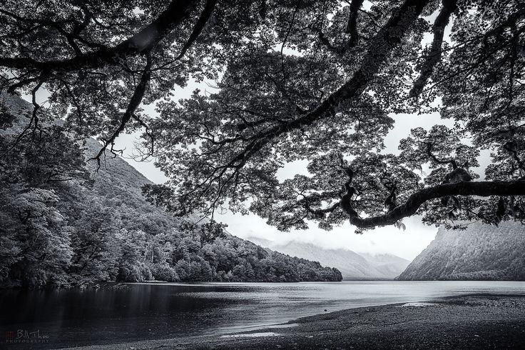 https://flic.kr/p/Kr9uQa | Lake Te Anau. | Lake Te Anau, New Zealand, October 2012.