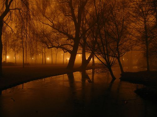 Goodnight to the City, Oosterpark, Amsterdam.