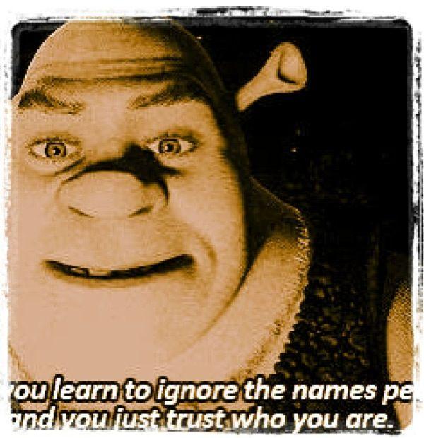 Best Shrek Quotes: 1000+ Images About Shrek On Pinterest