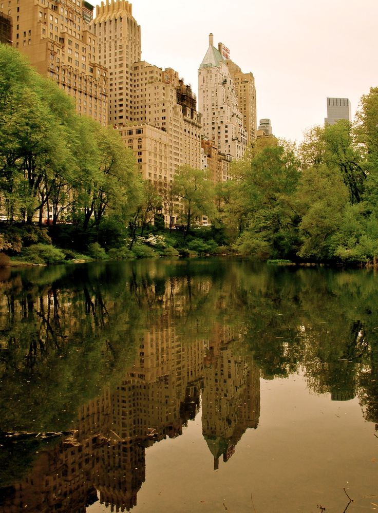 Central Park. Don't care much for NYC but want to see Central Park, Ground Zero, and the Statue of Liberty.  My first stop will be Mood where Project Runway contestants shop.  Would be awesome to see Tim Gunn