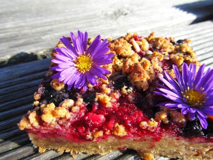 veS MÍRNA: Špaldový celozrnný ovocný koláč s drobenkou (vegan)