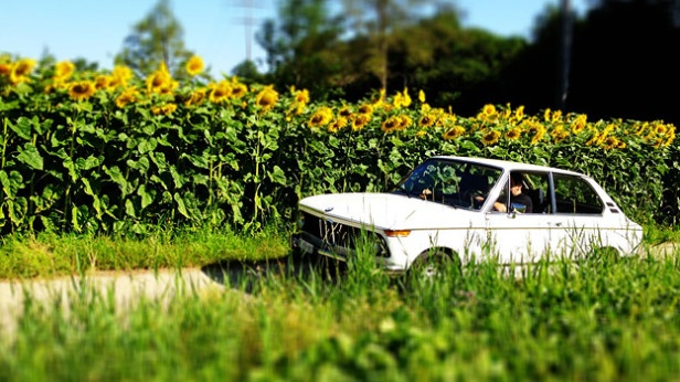 For sale, zu verkaufen: BMW 2002 Touring:  http://www.autorevue.at/bmw/bmw-2002-touring-zu-verkaufen-gebrauchtwagen-oldtimer.html