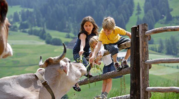 Zuid-Tirol-Vakantie op de boerderij in Oostenrijk - populair dus vroeg boeken!