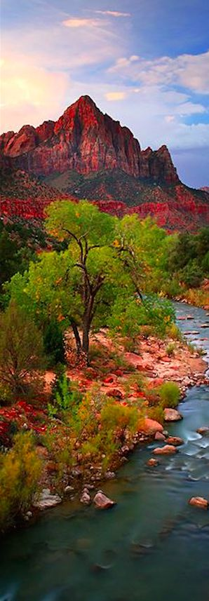Zion Canyon in Zion National Park, Utah • photo: Jeffrey Murray on Flickr